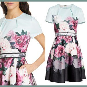 Ted Baker Wilmana Magnificent Skater Dres US 6 NWT